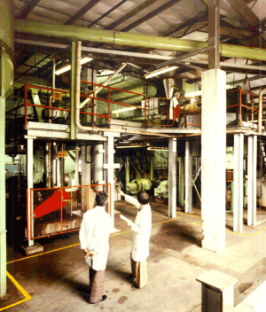 Part of the pulping plant where the logs of wood were processed.